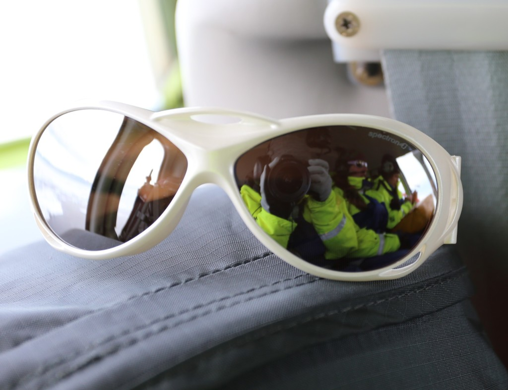 Sunglasses_Cropped
