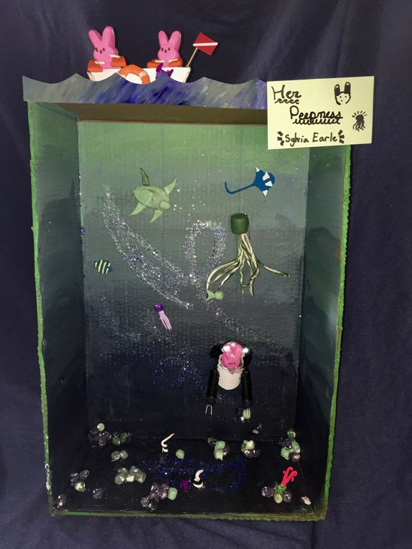 Diorama: Her Peepness Sylvia Earle