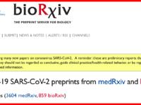 Problemas con los preprints: cómo cubrir manuscritos preliminares de forma responsable